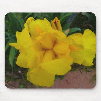 Fleur Mousepad d'iris jaune Tapis De Souris