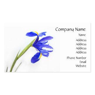 Fleur pourpre d'iris modèles de cartes de visite