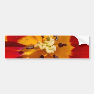 Fleur rouge et jaune de tulipe autocollant de voiture