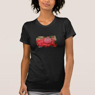 Fleur rouge exotique V de gingembre de torche - T-shirts