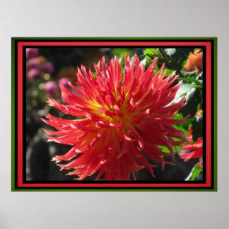 Fleur rouge poster