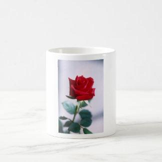 Fleur simple de rose rouge tasse à café