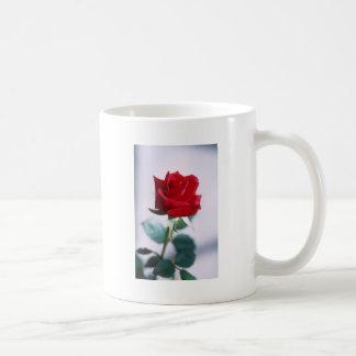 Fleur simple de rose rouge tasse