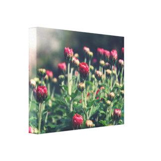 Fleurissez la photographie, lit de fleur, aménagez toiles tendues sur châssis