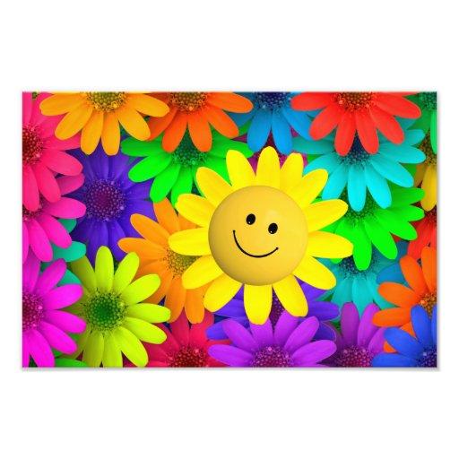 Fleurs colorées photo d'art