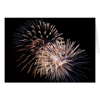 Fleurs de feu d artifice - cartes de vœux