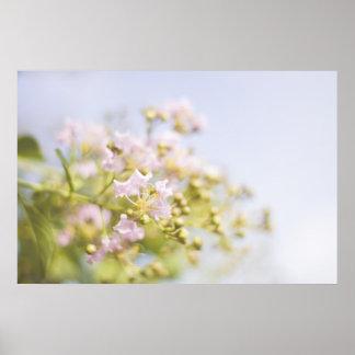 Fleurs de Pastell Poster