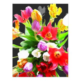 Fleurs de tulipe de ressort carte postale