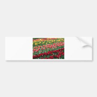 Fleurs de tulipe en fleur 4 autocollant de voiture