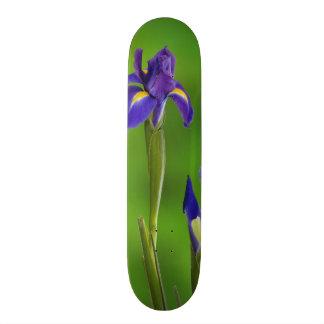 Fleurs d'iris plateau de skateboard