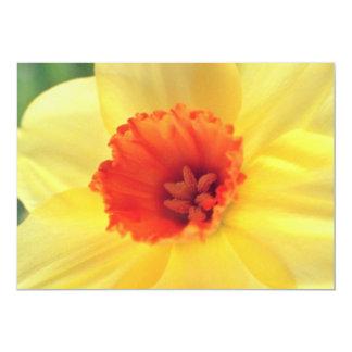 fleurs jaunes de Jonquil Invitation