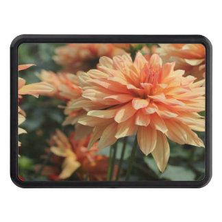 Fleurs oranges de dahlia couvertures d'attelage de remorque
