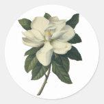 Fleurs vintages, fleur blanche de floraison de mag autocollants