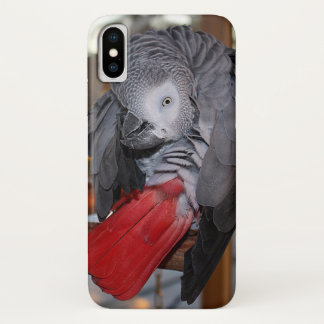 Flexible Congo African Grey Parrot with Red Tail iPhone X Case
