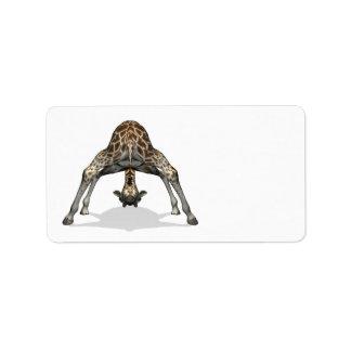 Flexible Giraffe