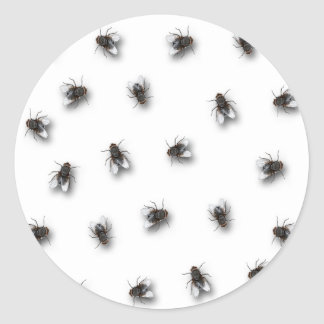 Flies Round Sticker