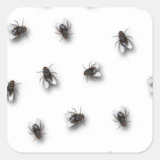 Flies Square Sticker