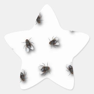 Flies Star Sticker