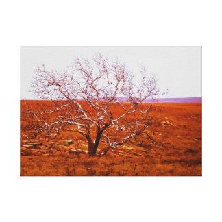Flint hills of Kansas Stretched Canvas Prints