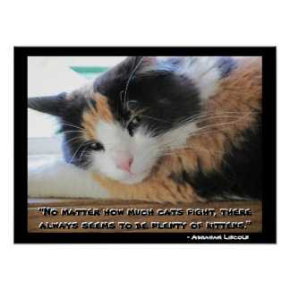 Flirty  Calico With Abraham Lincon  quote Meme Poster