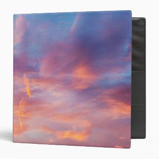 flirty sky vinyl binders