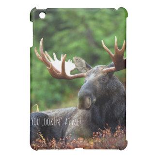 Flirty Wild Moose Photograph Alaska Wilderness Case For The iPad Mini