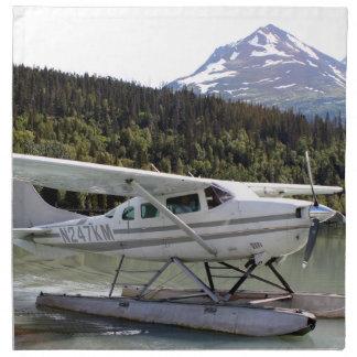 Float plane, Trail Lake, Alaska 3 Napkin