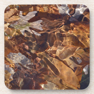 Floating Autumn Leaves Abstract Photography Camo Coaster