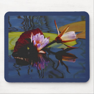 Floating Beauties (water lillies) mousepad