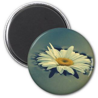 Floating Daisy Magnet
