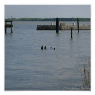 Floating Dock Poster