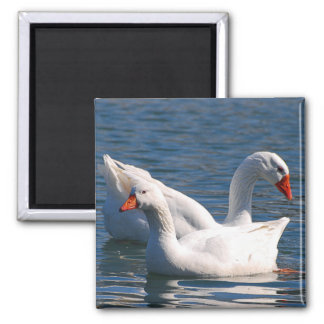Floating Geese Magnet