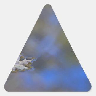 Floating Maple Leaf Triangle Sticker