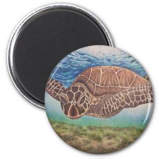 """""""Floating Sea Turtle"""" Magnet"""