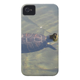 Floating turtle swimming in a pond iPhone 4 Case-Mate case
