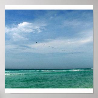 Flock in Flight - Destin, Florida Poster