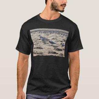 Flock of Caspian Tern Birds T-Shirt