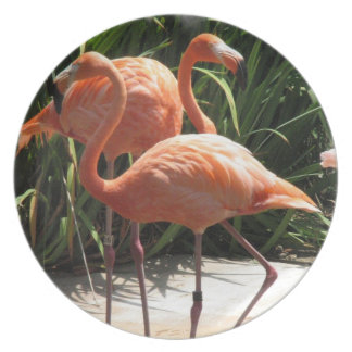 Flock of Flamingos Plate