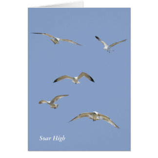 Flock of High-Flying Seagulls Card
