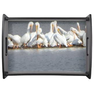 Flock of Pelican Serving Tray