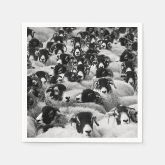 Flock of Sheep Black and White Disposable Napkin