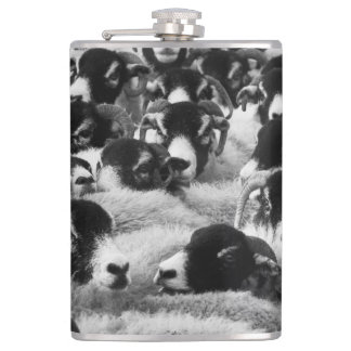 Flock of Sheep Black and White Hip Flask