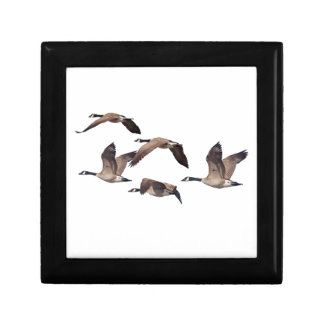 Flock of wild geese gift box