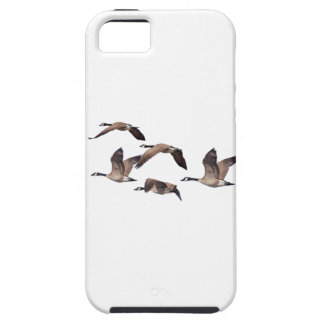 Flock of wild geese iPhone 5 case
