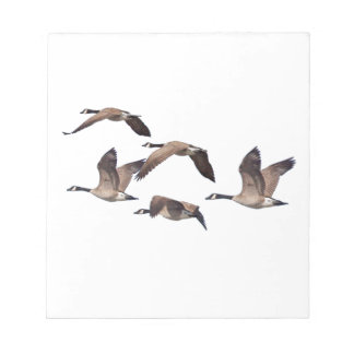 Flock of wild geese notepad