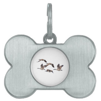 Flock of wild geese pet ID tag