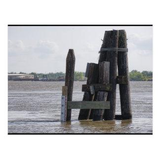 Flooded Mississippi Postcard