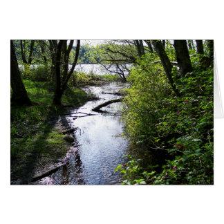 Flooded Trail Card