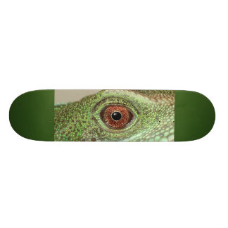 Flopping Fish Designs ™ Skate Boards