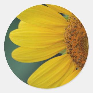 Flora dela Sol sticker